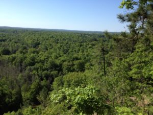 Hiking Manistee River High Banks Rollaway