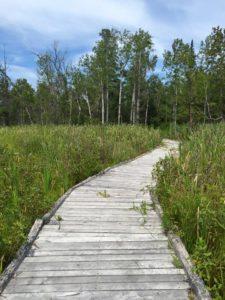 Hiking Miller Creek Nature Reserve