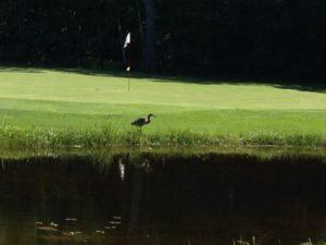 Interlochen Golf Course, Interlochen, Michigan