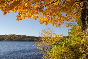Fall Foliage Background. Vibrant fall color frames the pristine waters of Sable Lake at the Pictured Rocks National Lakeshore in the Upper Peninsula of Michigan