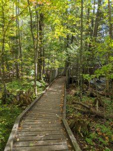 Seven Bridges Natural Area - Rapid River - Kalkaska County