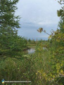 Grass River Natural Area, Bellaire, Antrim County, Michigan