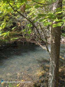 Rugg Pond Dam, Rapid River, Rapid City, Kalkaska County, Michigan